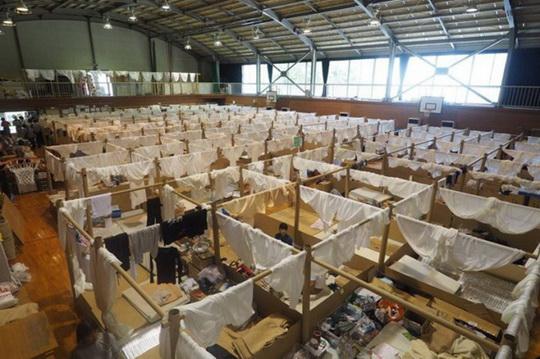 Курьезы: в Японии строят дома из бумаги и картона для беженцев и олигархов