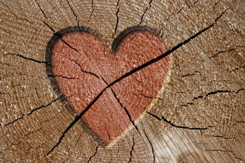 Как же отремонтировать трещины на деревянных балках.