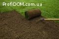 Профессиональная укладка рулонного газона 'под ключ'