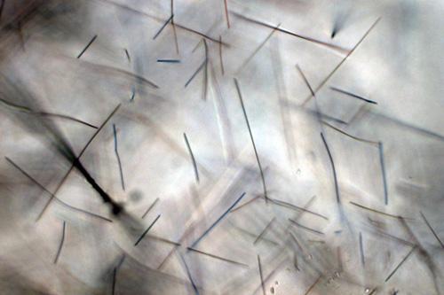 Придуманы новые архитектурные панели, поглощающие смог