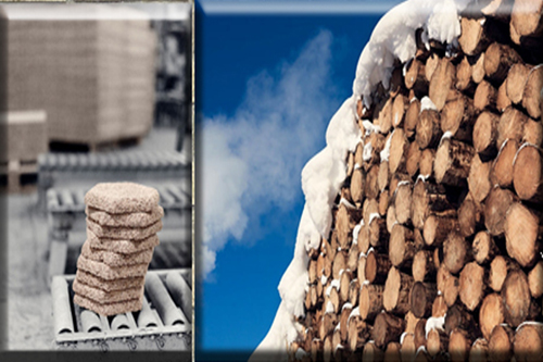 Создан древоцемент – новый материал для облицовоных панелей