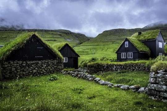 Курьезы: в Скандинавии на крышах домов сажают траву. Фото