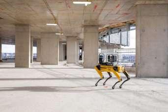 Архитекторы завели собаку-робота