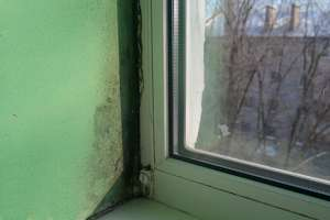 Как избавиться от плесени на ПВХ-окнах и откосах
