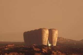 Колония на Марсе будет из бамбука