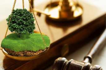 Штрафы за нарушения земзаконодательства увеличат