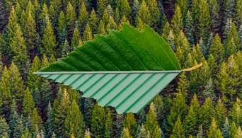 Обирайте якісні сталеві будівельні матеріали та зменшуйте вплив на довколишнє середовище