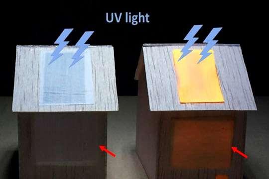 Создана люминесцентная древесина, способная осветить комнату