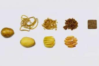 Традиционные строительные материалы заменят картофельной кожурой