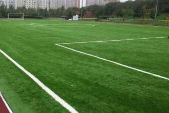 В расследование строительства футбольных полей вкрадывается политика