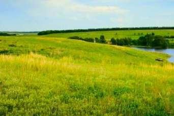 Государству вернули 142 га особо ценных земель