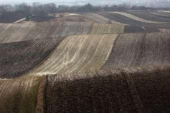 На инвентаризацию земель дали еще два месяца