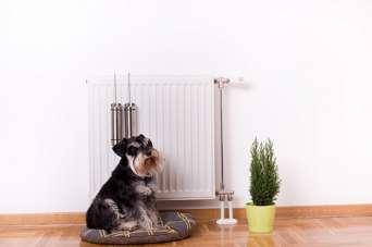 Безпечний і тривалий захист радіаторів опалення