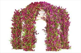 Майструємо садову арку для квітів