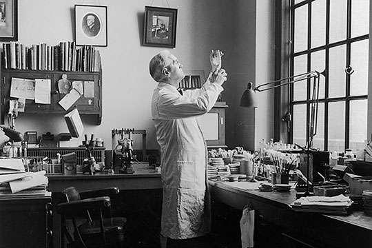 Как в 1959 году в СССР за полтора месяца ликвидировали вспышку черной оспы