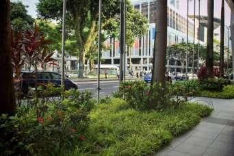 Как город-государство стал примером для создания зеленой планеты